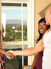Jada Fire - Iceing Fun - Round And Brown .com